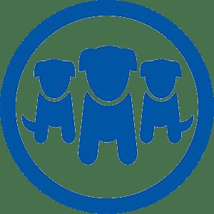 Pet Insurance Australia - Cat, Kitten, Dog & Puppy Plans ...