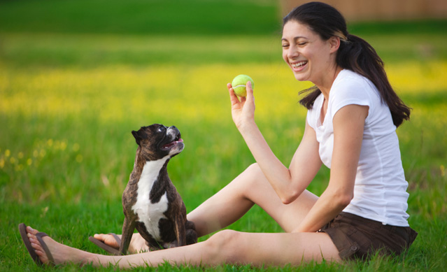 Games: why play with your dog?
