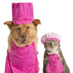 cat dog cooking