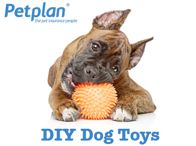 DIY Toys Dogs