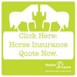 get a quote equine