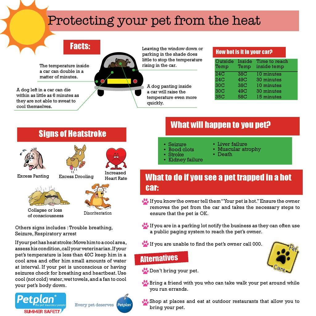 Heat-Infographic-1024x1024