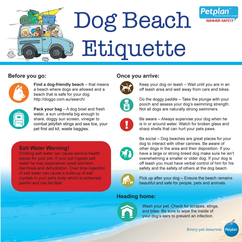 doggy-beach-etiquette-1024x1024