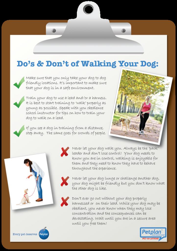 dog walking-01