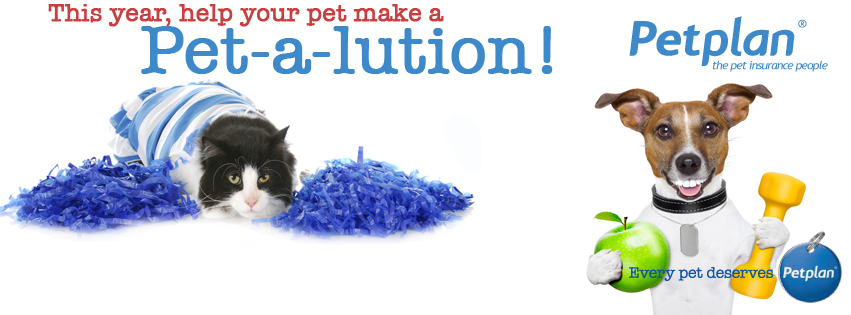 pet-a-lution Facebook Header