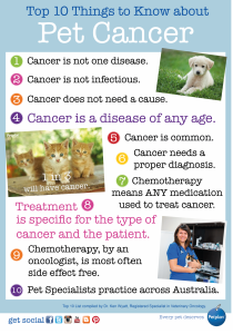 10 Things Pet Cancer