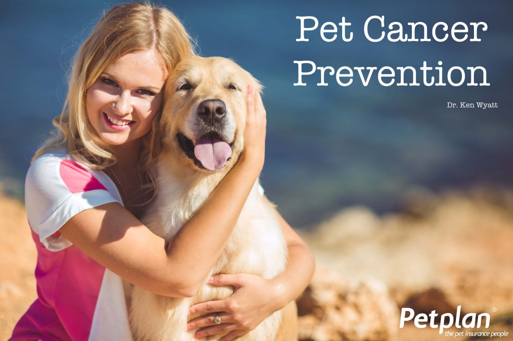 Pet Cancer Prevention Tips