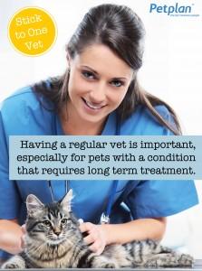 Cat Long Term Treatment