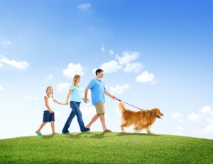 Dog and family in park