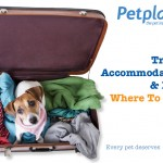 2014-16-08 Travel Accommodation for Dogs