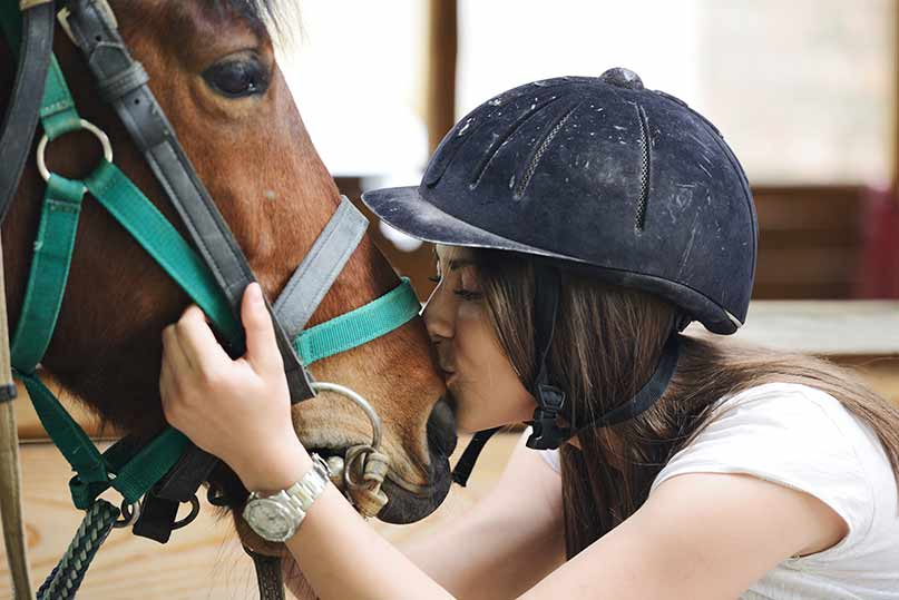 Australian horse insurance