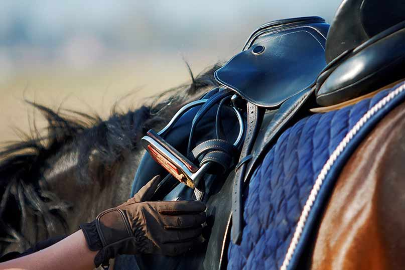 saddle fit for rider and horse