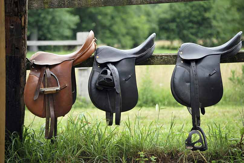 saddle fitting for your horse