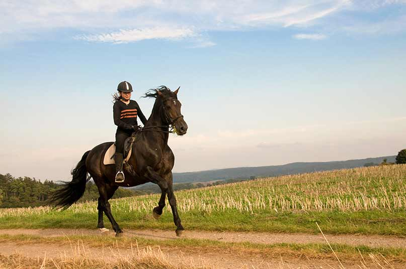 horse riding holidays australia