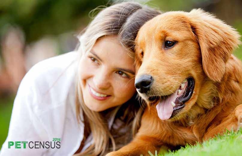 petplan insurance pet census