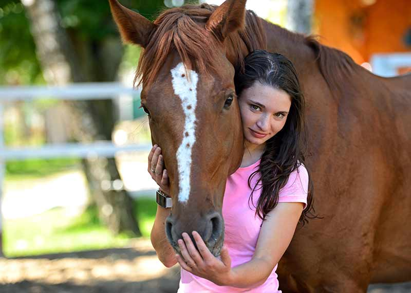 horse-whorls