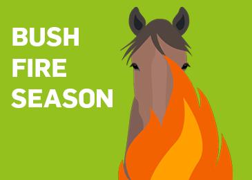 Equine Bushfire season Thumbnail
