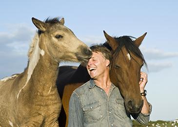 Horse_Kissing_365x260