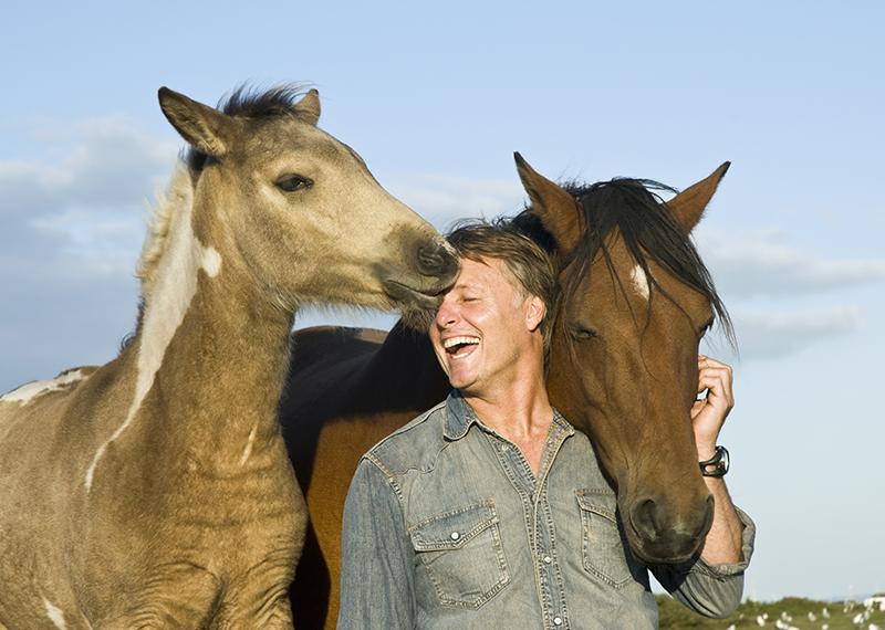 Horse_Kissing_800x527